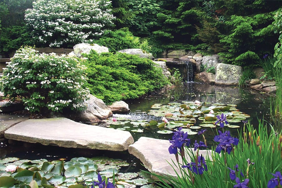 pond-with-waterfall-spill-rocks-and-boulders