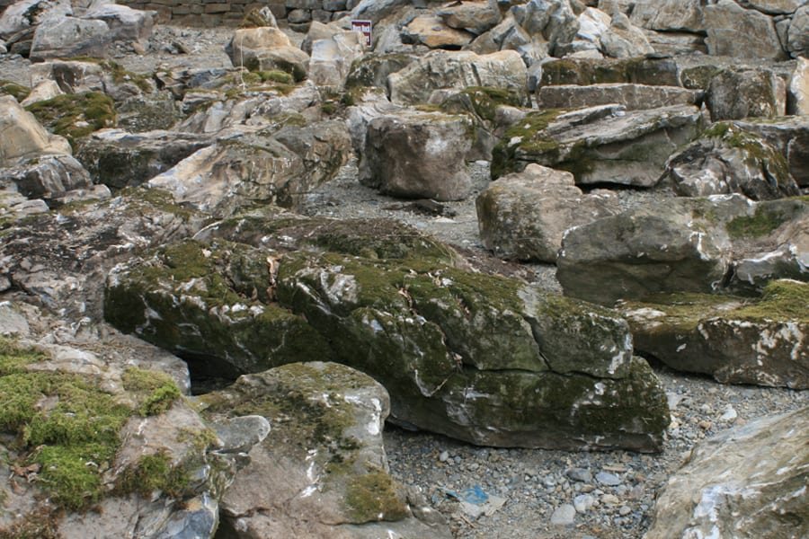 moss-rock-samples-at-wicki-stone