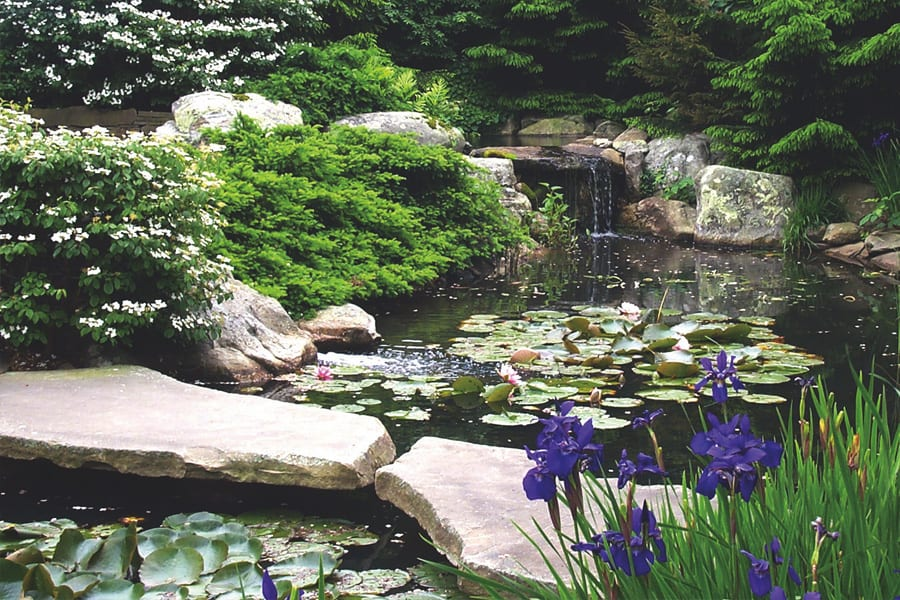 Water Garden Stone Choices