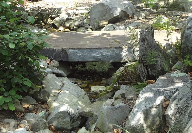 example of a bridge rock in a water garden
