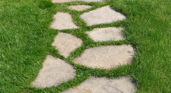 Picture of garden path stone in grass
