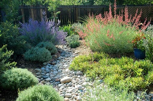 Dry-Creek-Bed-Example-3